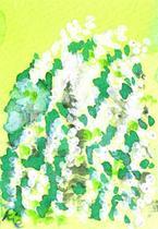 雪柳(ユキヤナギ)のイラスト