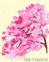 花桃のイラスト
