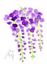 4月5日の誕生花と花言葉藤球根アイリス一年366日の花言葉と誕生花
