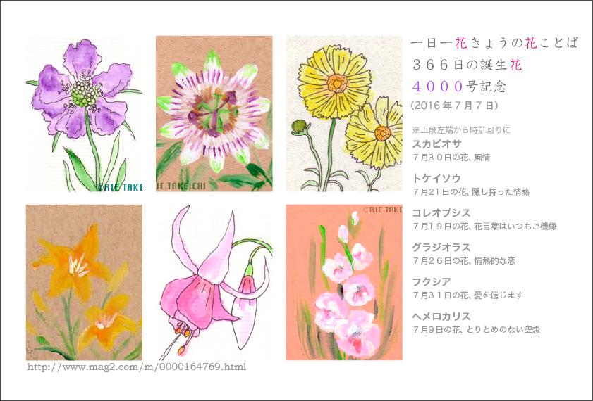 花のイラスト一年366日の花言葉と誕生花のイラストレーション